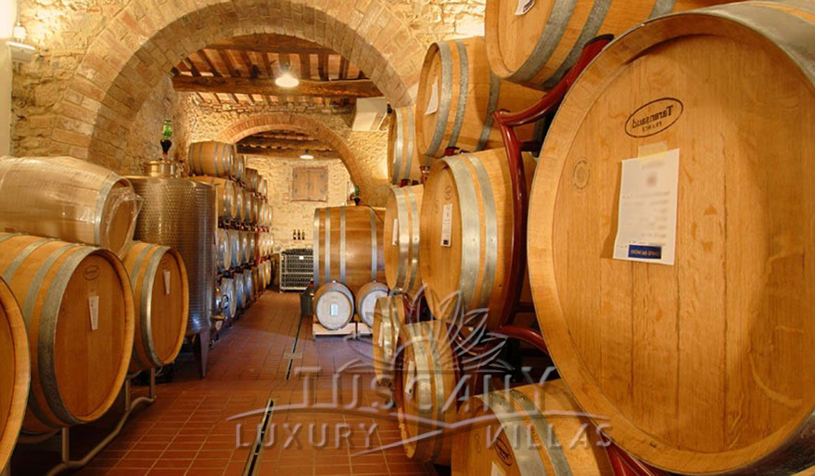 Winery immersed in Tuscany Siena countryside near village: Cellar