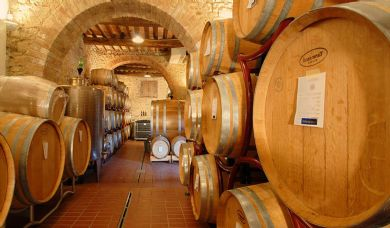 Winery immersed in Tuscany Siena countryside near village: Swimming pool