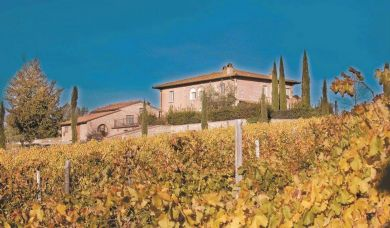 Elegant Tuscan farmhouse near Montepulciano with vineyards and olive grove: Swimming pool