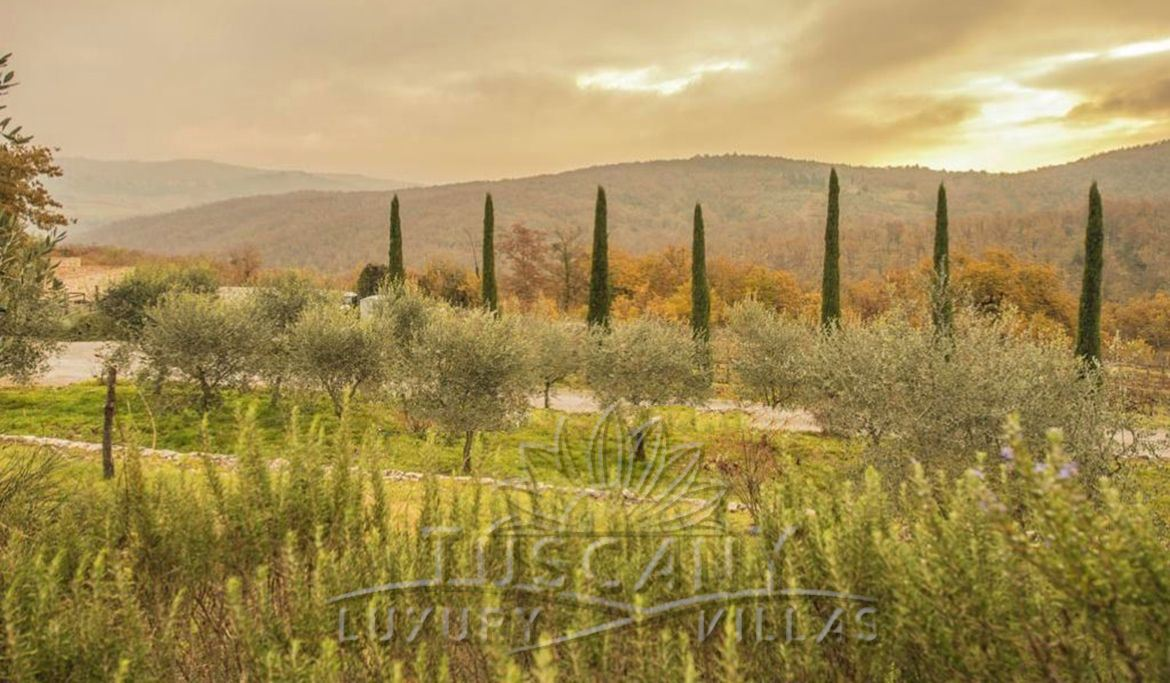 Magnificent wine estate for sale in the Chianti Classico with pool, vineyard, olive grove and land.