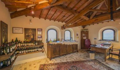 Magnificent wine estate for sale in the Chianti Classico area: Swimming pool